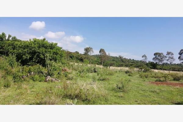 Foto de terreno habitacional en venta en s/n , joya de la huerta, morelia, michoacán de ocampo, 8135357 No. 10