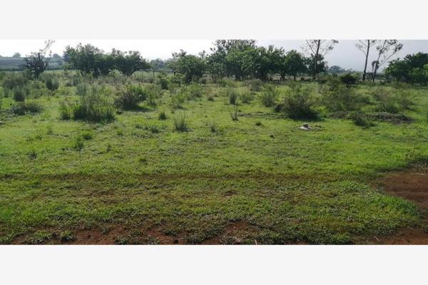 Foto de terreno habitacional en venta en s/n , joya de la huerta, morelia, michoacán de ocampo, 8135357 No. 13