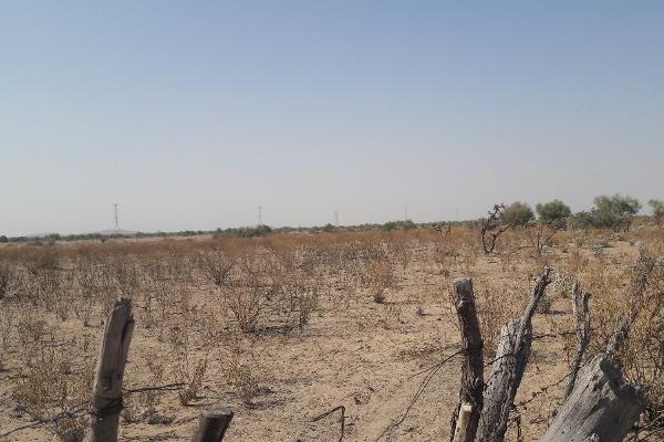 Foto de terreno habitacional en venta en s/n , la coteña, hermosillo, sonora, 7228723 No. 04