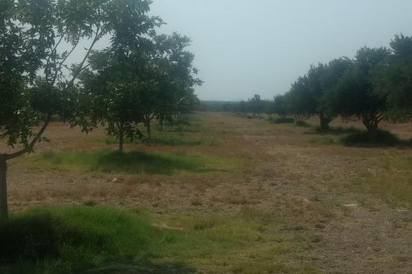 Foto de rancho en venta en s/n , la rosa, general cepeda, coahuila de zaragoza, 10050771 No. 01