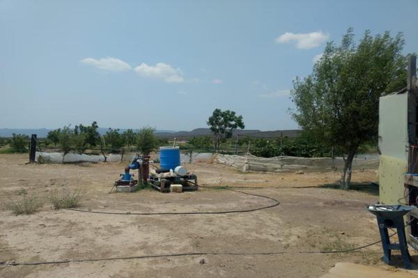 Foto de rancho en venta en s/n , la rosa, general cepeda, coahuila de zaragoza, 10050771 No. 03