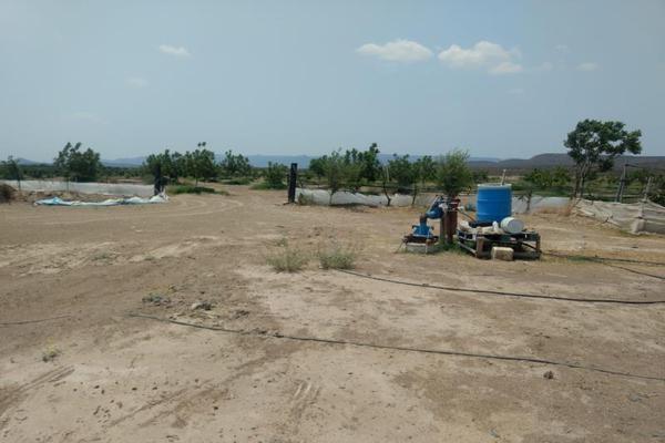 Foto de rancho en venta en s/n , la rosa, general cepeda, coahuila de zaragoza, 10050771 No. 05