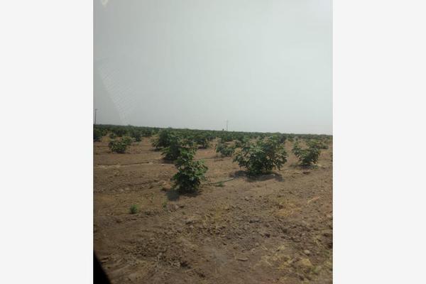 Foto de rancho en venta en s/n , la rosa, general cepeda, coahuila de zaragoza, 10050771 No. 06