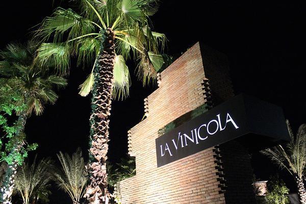 Foto de terreno habitacional en venta en s/n , la vinícola residencial, torreón, coahuila de zaragoza, 8442680 No. 06