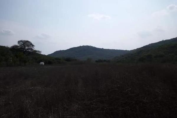 Foto de terreno comercial en venta en s/n , piedra rodada, tlaltizapán de zapata, morelos, 5883551 No. 01
