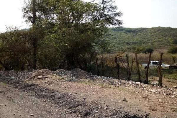 Foto de terreno comercial en venta en s/n , piedra rodada, tlaltizapán de zapata, morelos, 5883551 No. 03