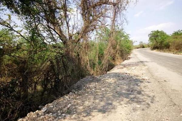 Foto de terreno comercial en venta en s/n , piedra rodada, tlaltizapán de zapata, morelos, 5883551 No. 04