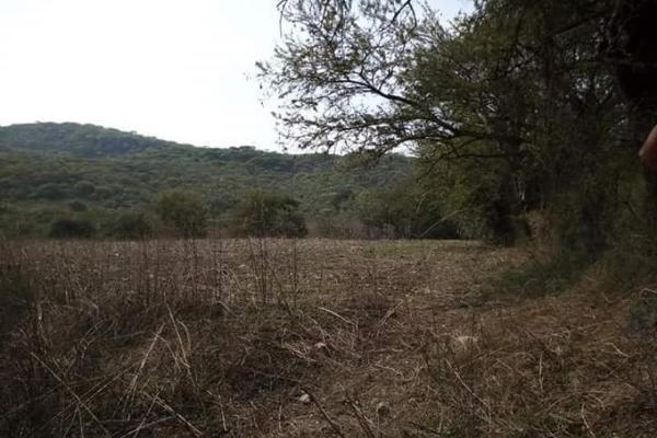 Foto de terreno comercial en venta en s/n , piedra rodada, tlaltizapán de zapata, morelos, 5883551 No. 06