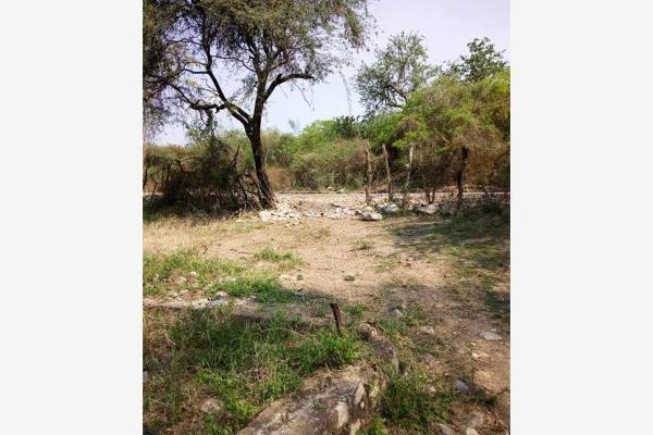 Foto de terreno comercial en venta en s/n , piedra rodada, tlaltizapán de zapata, morelos, 5883551 No. 07