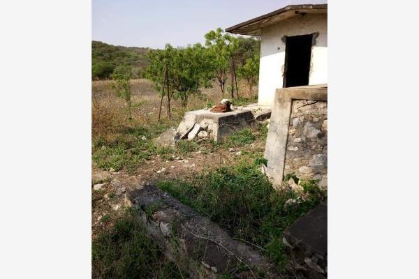 Foto de terreno comercial en venta en s/n , piedra rodada, tlaltizapán de zapata, morelos, 5883551 No. 08