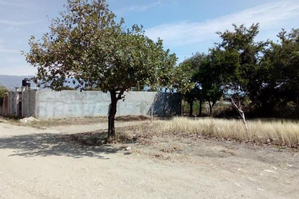 Foto de terreno comercial en venta en s/n , ribera las flechas, chiapa de corzo, chiapas, 5687413 No. 04