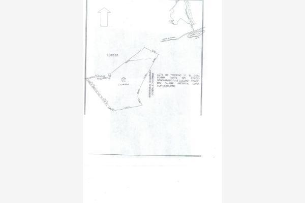 Foto de terreno comercial en venta en s/n , las copetonas, arteaga, coahuila de zaragoza, 8861854 No. 02