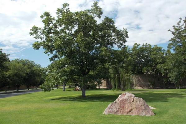 Foto de terreno habitacional en venta en s/n , las villas 7ma etapa, torreón, coahuila de zaragoza, 10193116 No. 06