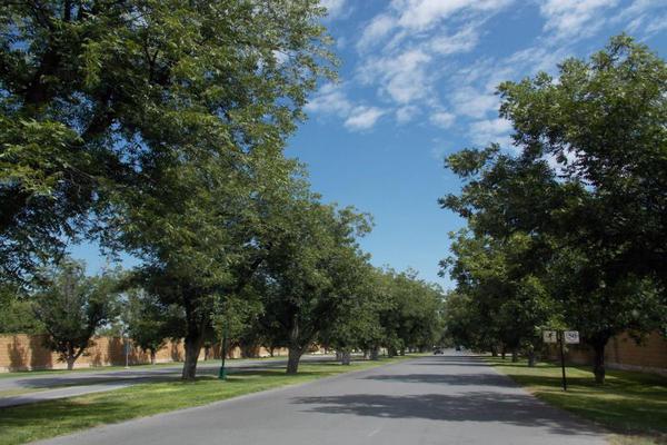 Foto de terreno habitacional en venta en s/n , las villas, torreón, coahuila de zaragoza, 10193116 No. 07