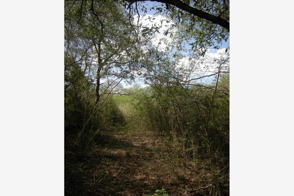 Foto de terreno habitacional en venta en s/n , lazarillos de abajo, allende, nuevo león, 9974923 No. 02