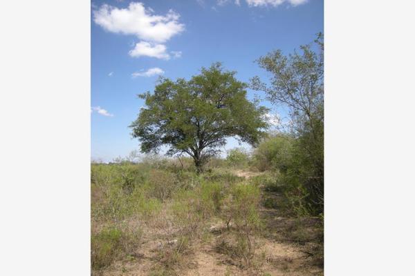 Foto de terreno habitacional en venta en s/n , lazarillos de abajo, allende, nuevo león, 9974923 No. 06