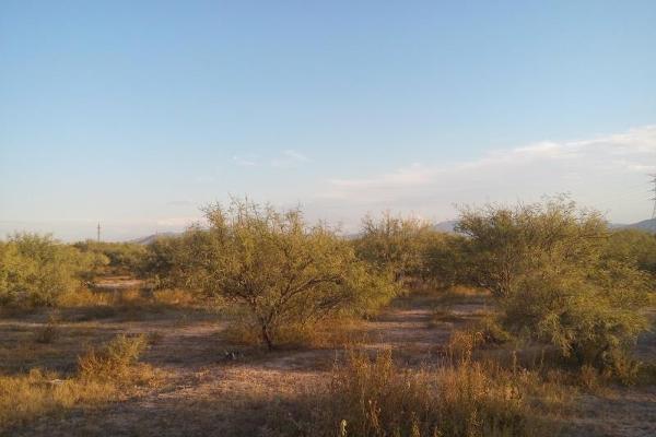 Foto de terreno habitacional en venta en s/n , lerdo ii, lerdo, durango, 9982761 No. 02