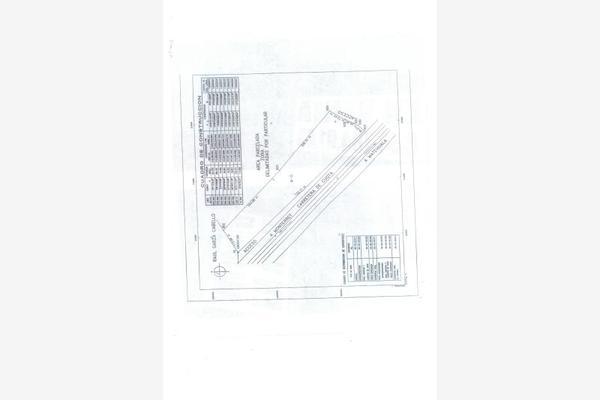 Foto de terreno habitacional en venta en s/n , loma alta, arteaga, coahuila de zaragoza, 10190901 No. 03