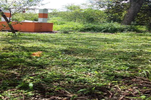 Foto de terreno comercial en venta en s/n , los adobes, montemorelos, nuevo león, 10001926 No. 07