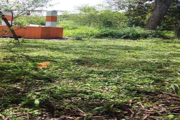 Foto de terreno comercial en venta en s/n , los altos, monterrey, nuevo león, 0 No. 07
