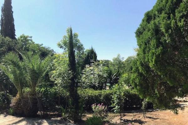 Foto de rancho en venta en s/n , los palmitos, cadereyta jiménez, nuevo león, 9957633 No. 12