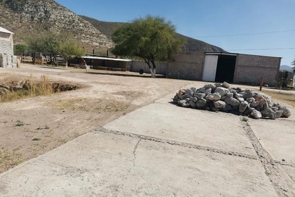 Foto de rancho en venta en s/n , los pinos, lerdo, durango, 17483290 No. 08