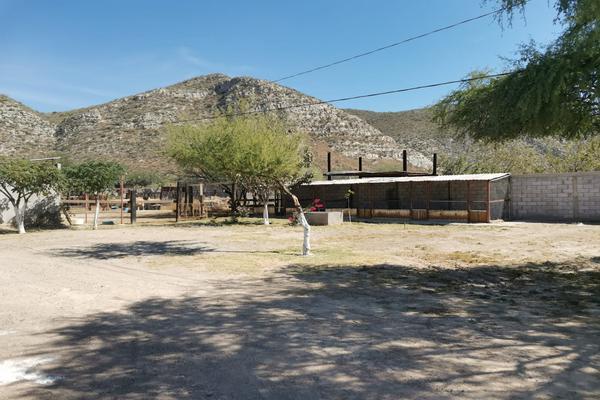 Foto de rancho en venta en s/n , los pinos, lerdo, durango, 17483290 No. 19