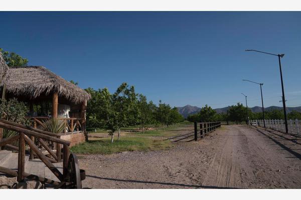 Foto de rancho en venta en s/n , los pinos, lerdo, durango, 21290311 No. 06