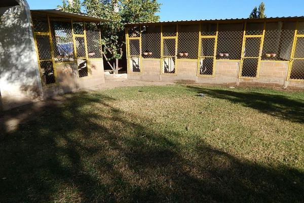 Foto de rancho en venta en s/n , luz del carmen, durango, durango, 10190449 No. 20