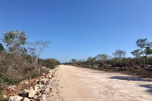 Foto de terreno habitacional en venta en s/n , merida centro, mérida, yucatán, 5362718 No. 04