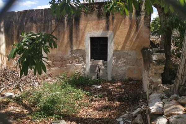Foto de casa en venta en s/n , merida centro, mérida, yucatán, 9975554 No. 04