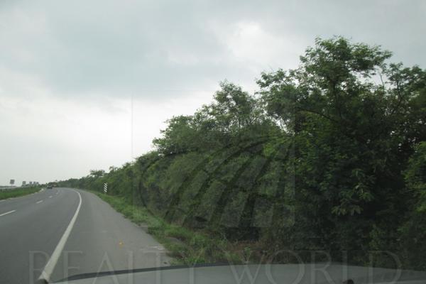 Foto de terreno comercial en venta en s/n , montemorelos centro, montemorelos, nuevo león, 10000898 No. 02
