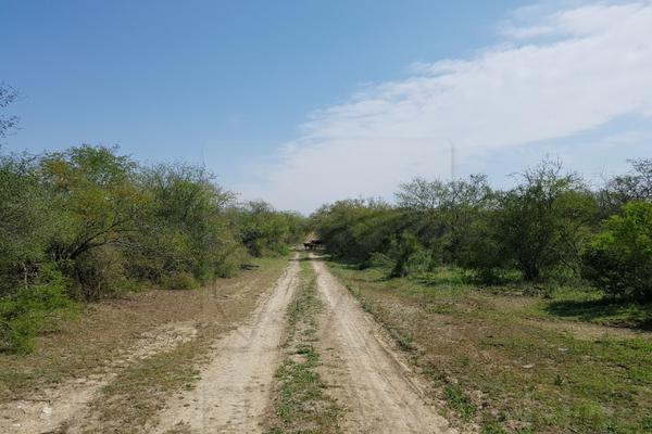 Foto de terreno comercial en venta en s/n , montemorelos centro, montemorelos, nuevo león, 9976320 No. 02