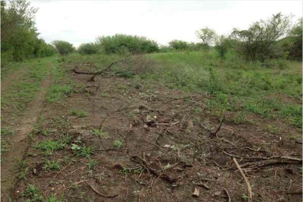 Foto de terreno comercial en venta en s/n , montemorelos centro, montemorelos, nuevo león, 9991458 No. 02
