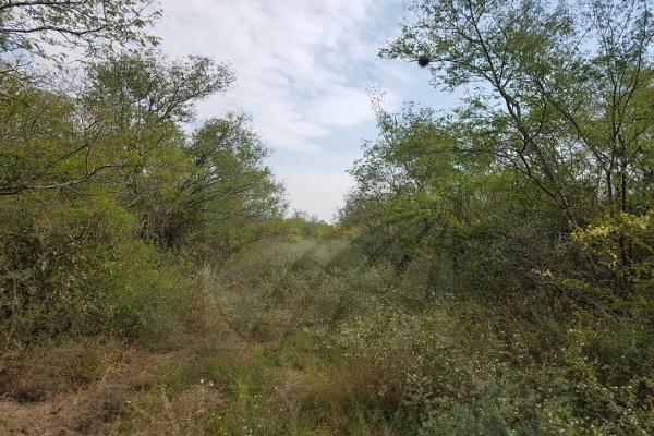 Foto de terreno comercial en venta en s/n , monterrey centro, monterrey, nuevo león, 0 No. 01