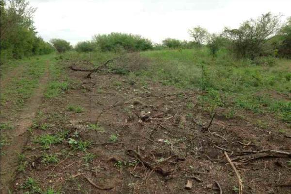 Foto de terreno comercial en venta en s/n , monterrey centro, monterrey, nuevo león, 0 No. 02