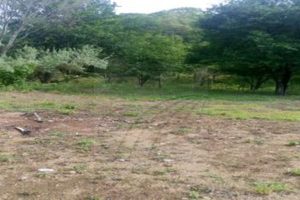 Foto de terreno comercial en venta en s/n , morelos, monterrey, nuevo león, 4679763 No. 06
