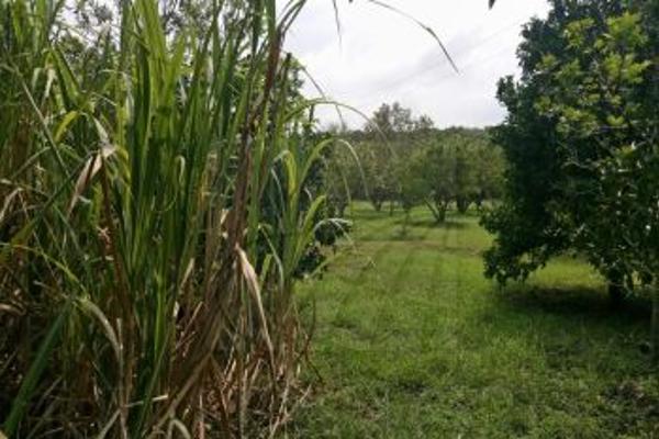 Foto de terreno comercial en venta en s/n , morelos, monterrey, nuevo león, 4679763 No. 13