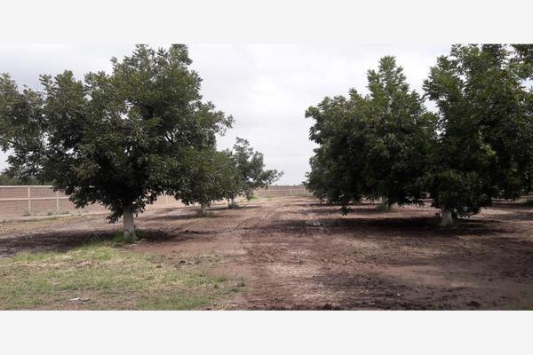 Foto de terreno habitacional en venta en s/n , nuevo gómez, gómez palacio, durango, 5951440 No. 01