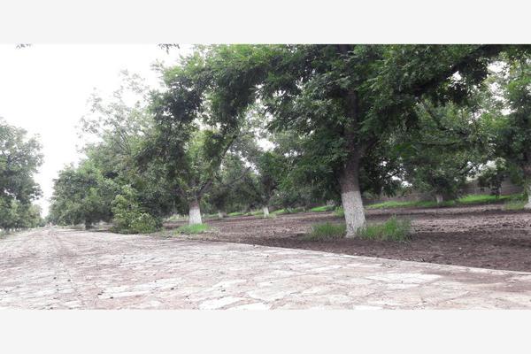 Foto de terreno habitacional en venta en s/n , nuevo gómez, gómez palacio, durango, 5952718 No. 02