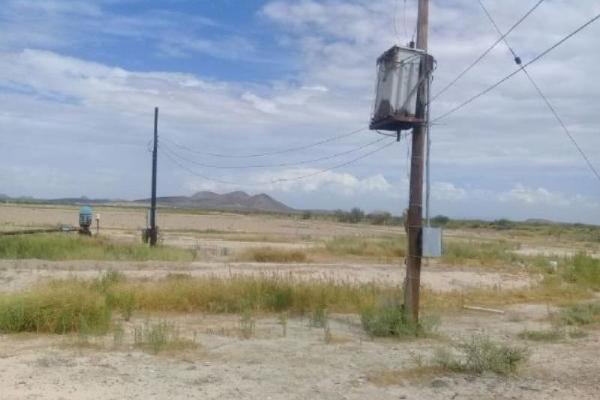 Foto de rancho en venta en s/n , rancho espino, durango, durango, 9959042 No. 12