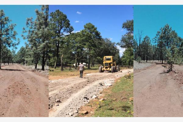 Foto de terreno comercial en venta en s/n , rancho laguna colorada de los lópez, durango, durango, 9956709 No. 01