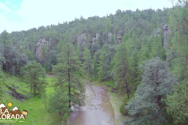 Foto de terreno comercial en venta en s/n , rancho laguna colorada de los lópez, durango, durango, 9971127 No. 01