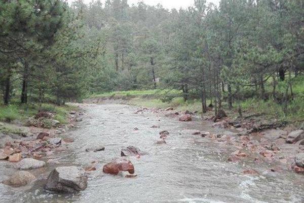 Foto de terreno comercial en venta en s/n , rancho laguna colorada de los lópez, durango, durango, 9971127 No. 02