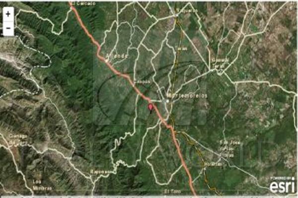 Foto de terreno comercial en venta en s/n , rincón de la sierra, monterrey, nuevo león, 0 No. 14
