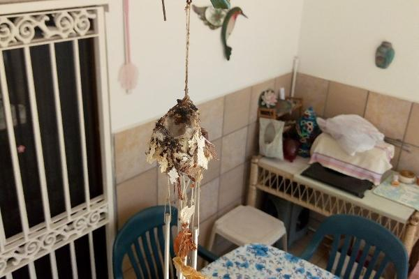 Foto de casa en venta en s/n , sábalo country club, mazatlán, sinaloa, 9102391 No. 08