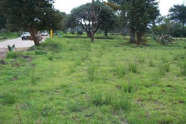 Foto de terreno comercial en venta en s/n , san francisco tlacuilohcan, yauhquemehcan, tlaxcala, 5374616 No. 02