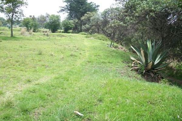 Foto de terreno comercial en venta en s/n , san francisco tlacuilohcan, yauhquemehcan, tlaxcala, 5374616 No. 03