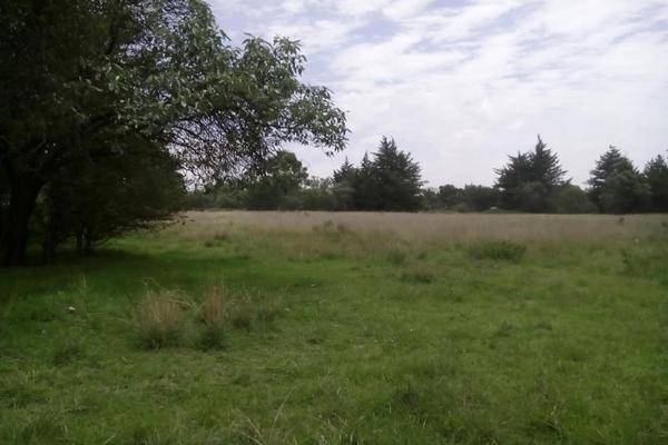 Foto de terreno comercial en venta en s/n , san francisco tlacuilohcan, yauhquemehcan, tlaxcala, 5374616 No. 06