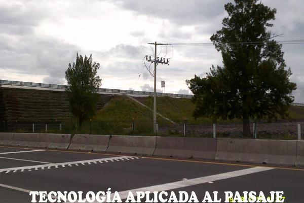 Foto de terreno comercial en venta en s/n , san josé agua azul, apaseo el grande, guanajuato, 5437846 No. 06